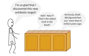 AntibioticTarget