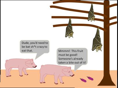 pigsandbats2