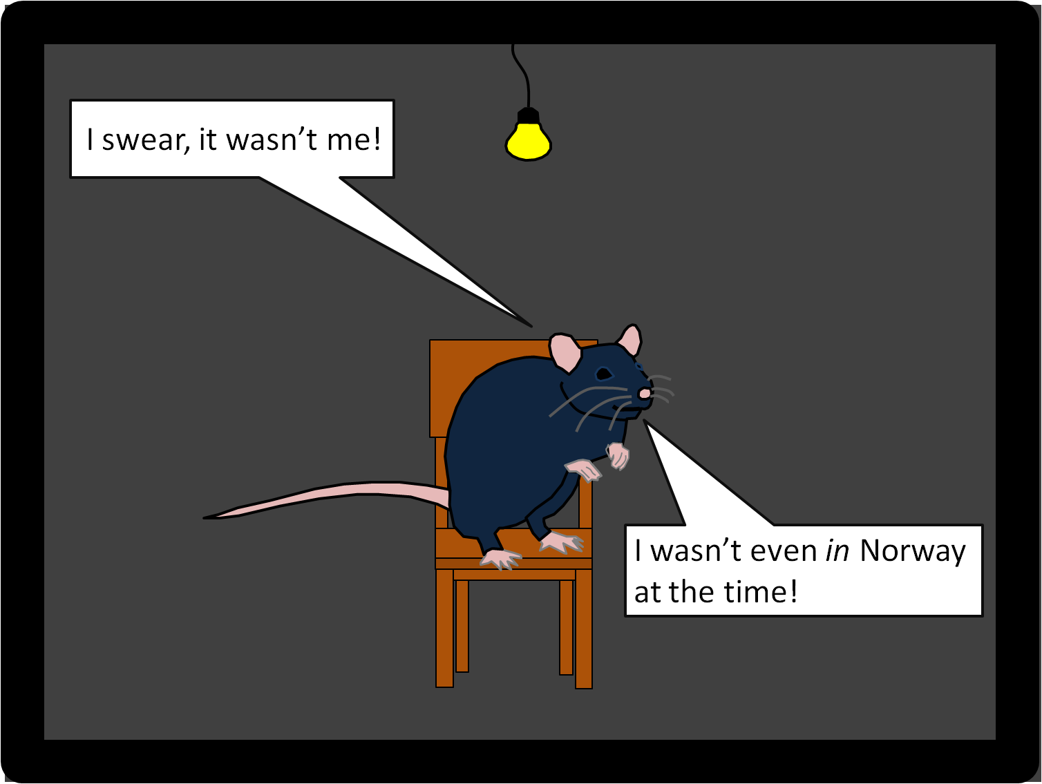 did rats spread the black death parasite ecology