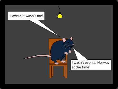 ratsandplague