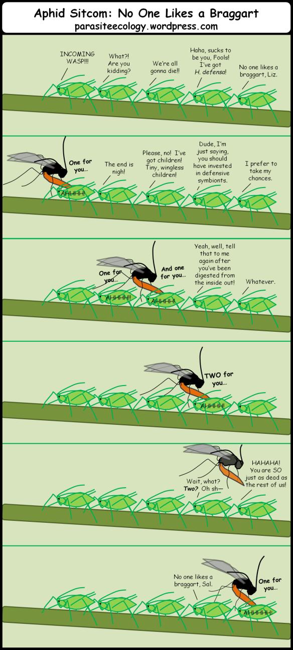 aphidsitcombraggart