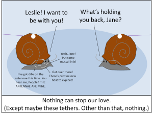 SnailTethers