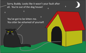 catindoghouse