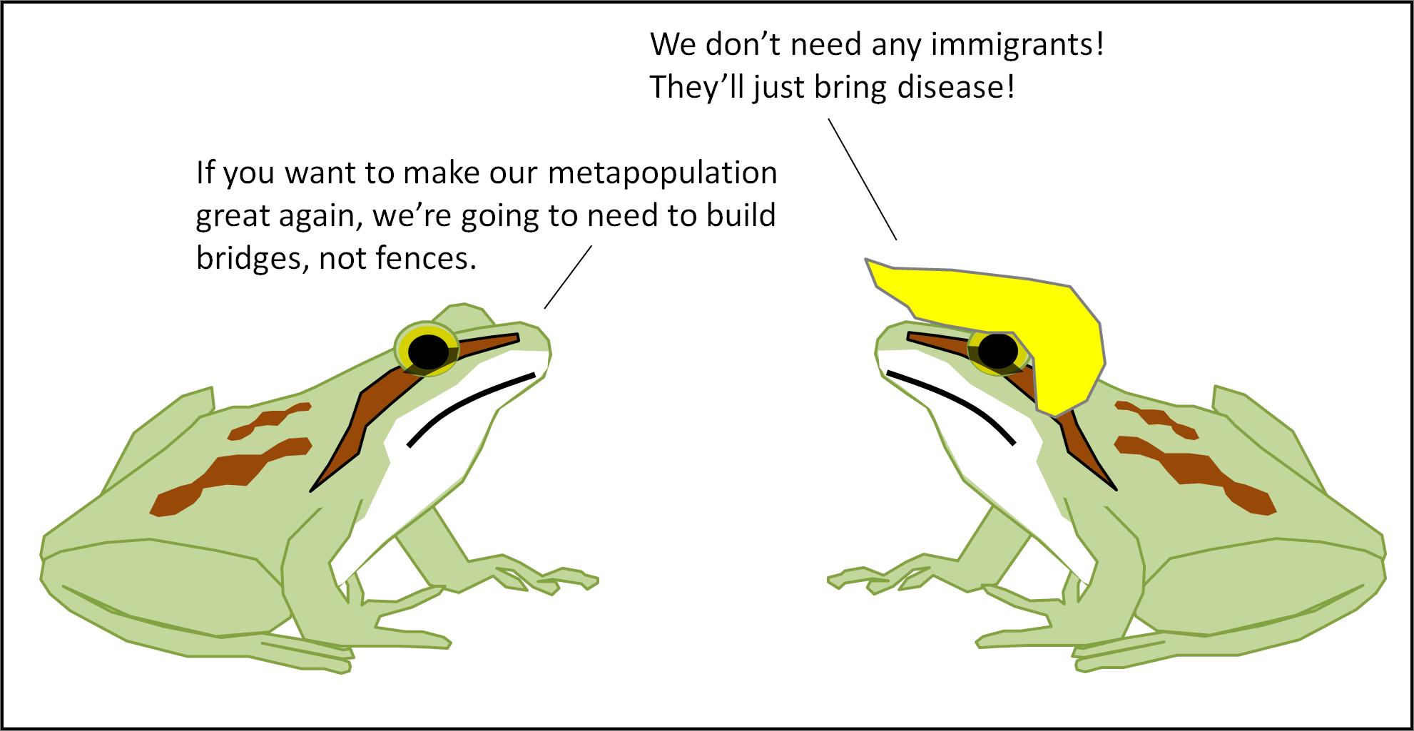 metapopulation