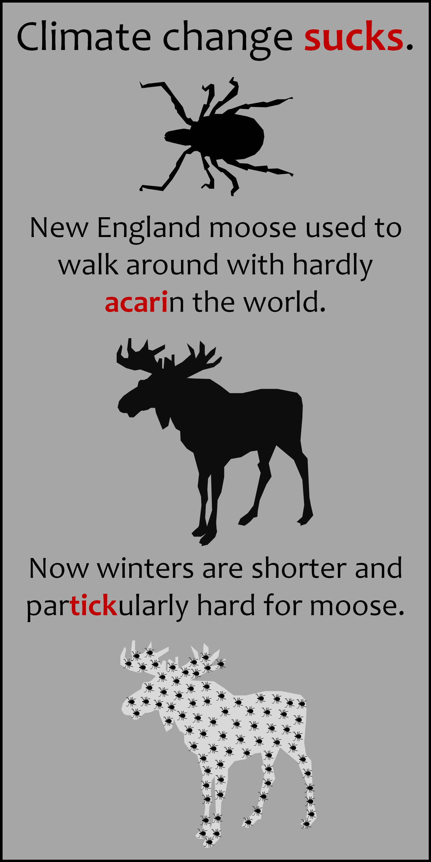 mooseandticks